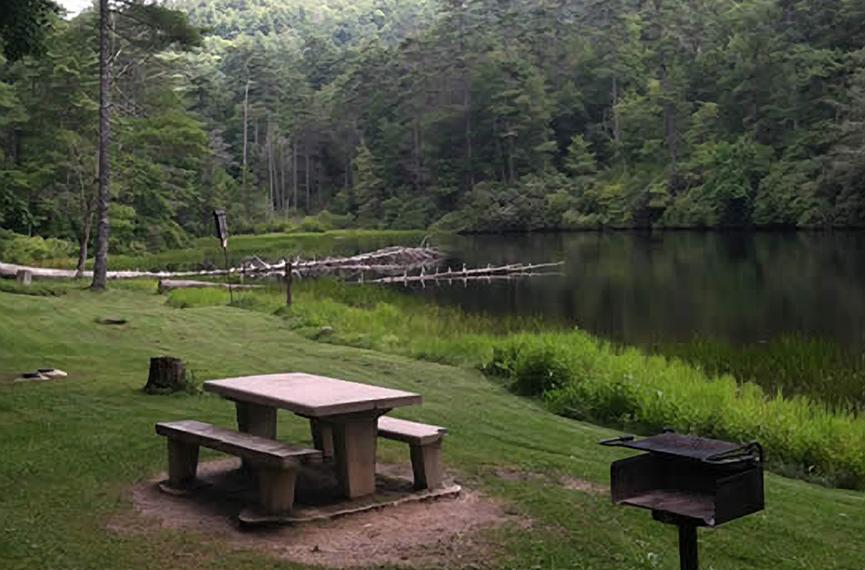 Van Hook Glade Campground   Laurel Magazine