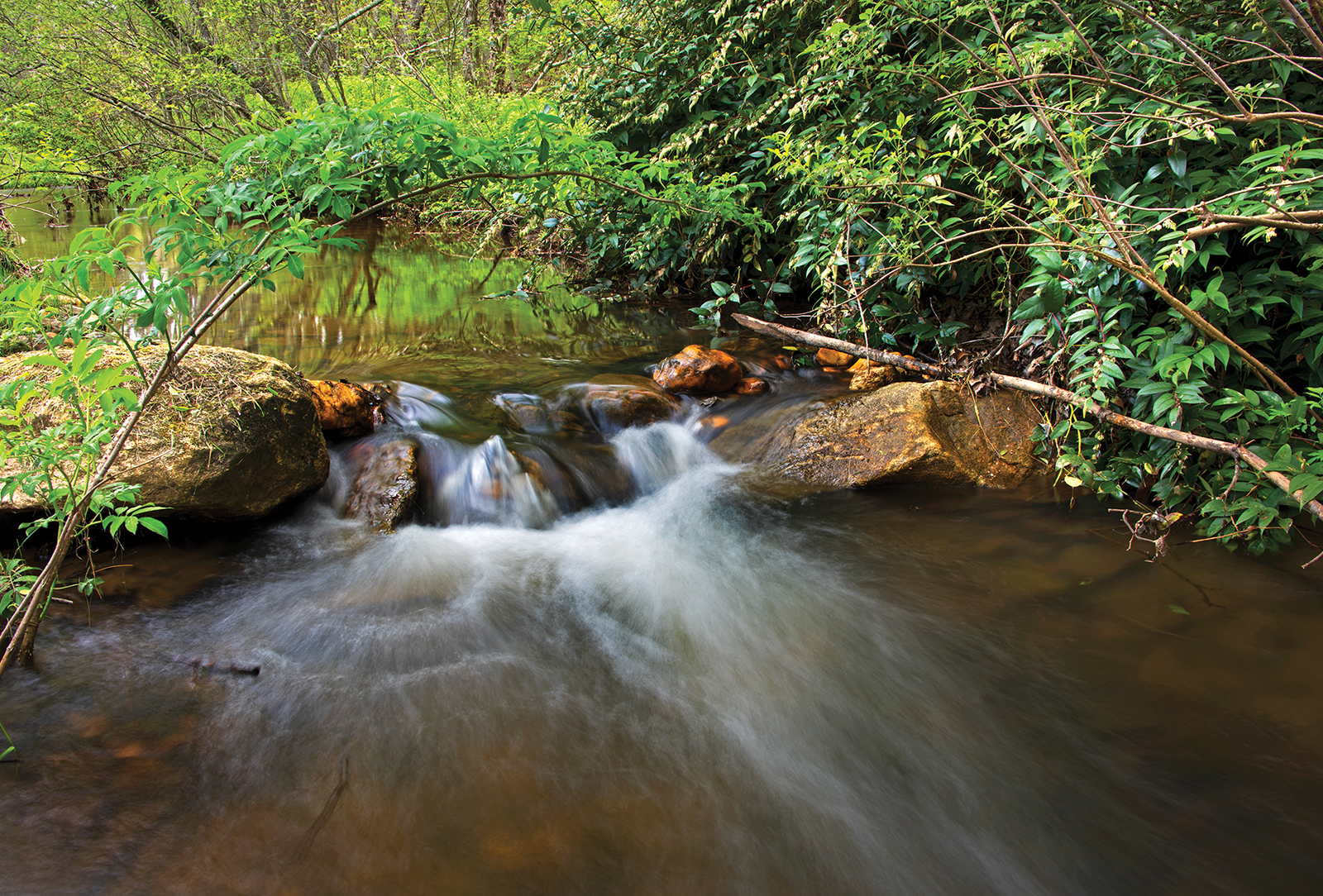 highlands-cashiers-land-trust-nc-kevin-fitzpatric-stream