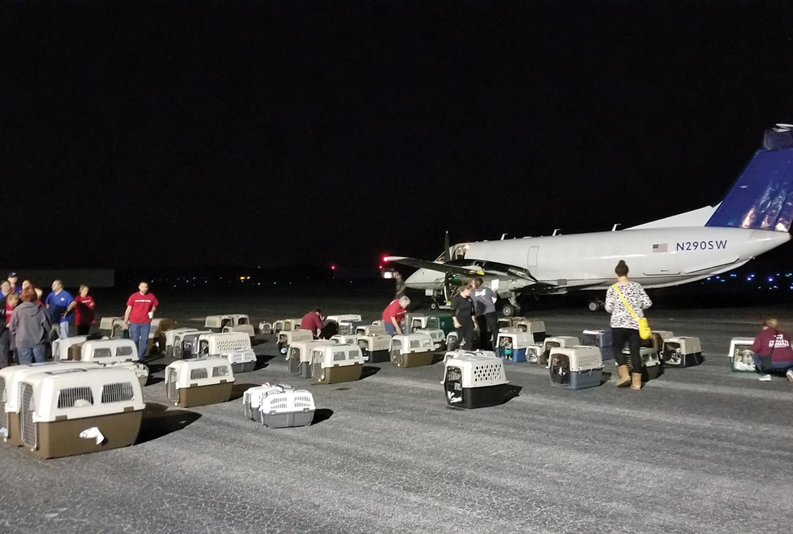 cashiers-highlands-humane-society-plane