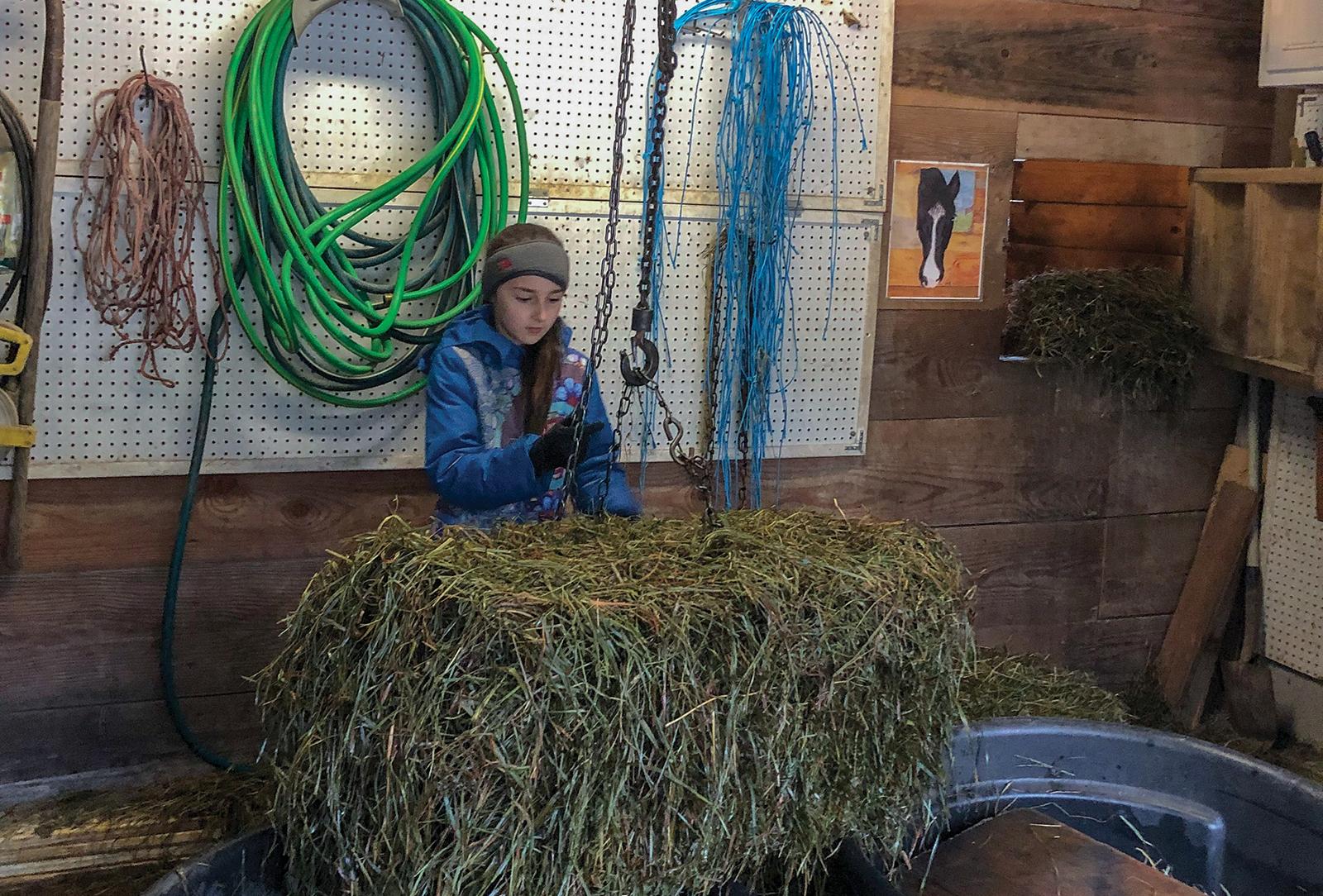 highlands nc carpe diem farms volunteer