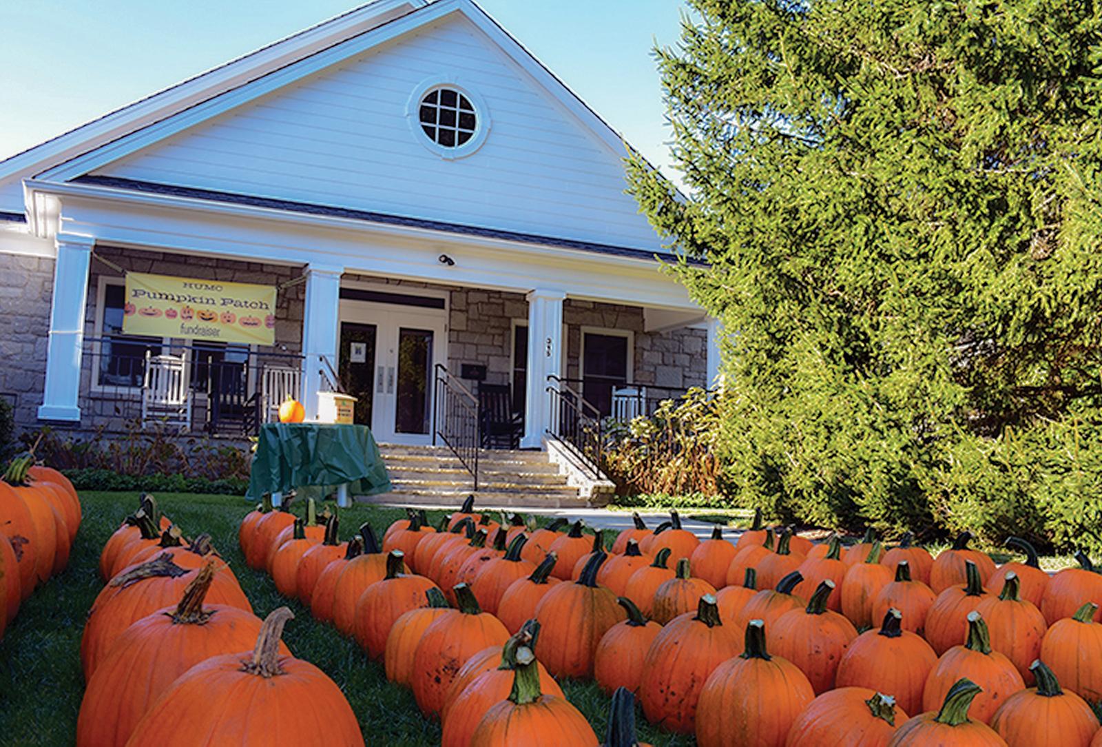 highlands nc pumpkin fest