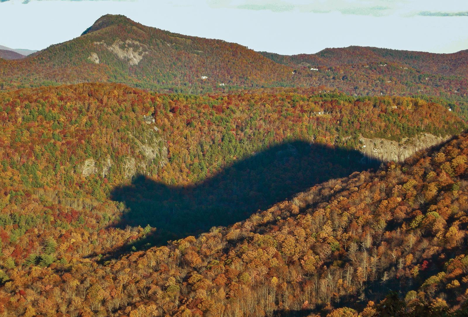 highlands cashiers land trust Big View bear shadow
