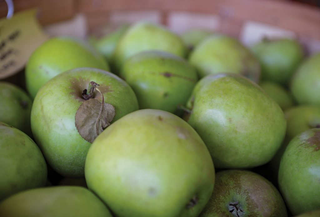 highlands nc cashiers nc green apples fall