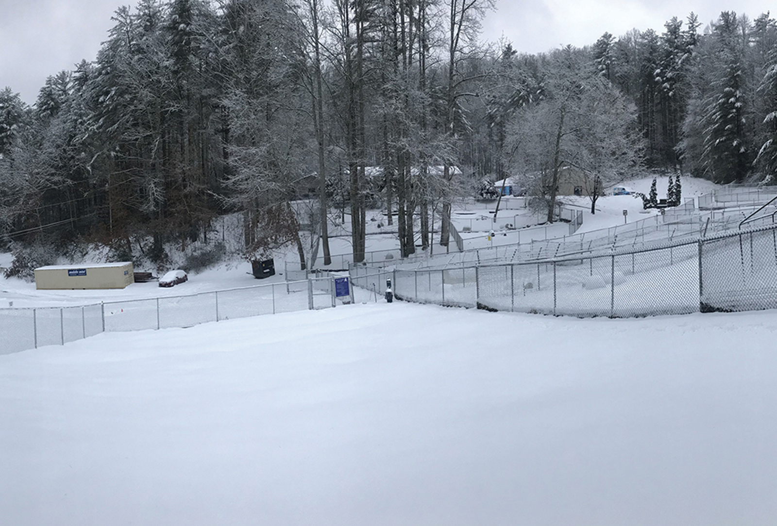 cashiers highlands humane society snow