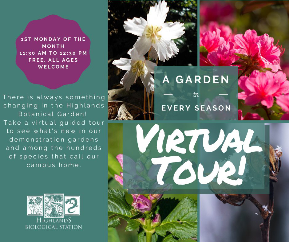 Highlands NC Biological Station Virtual Garden Tours