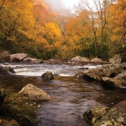 The Cullasaja Rive in Fall - Highlands NC