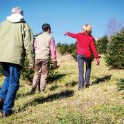 cashiers-nc-christmas-tree-farm-susan