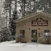 cashiers-nc-humane-society-snow