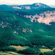 highlands-cashiers-land-trust-Horse-Cove-Black-Rock-and-Whiteside-Cove-Elf