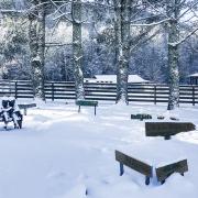 highlands-nc-carpe-diem-farms-winter