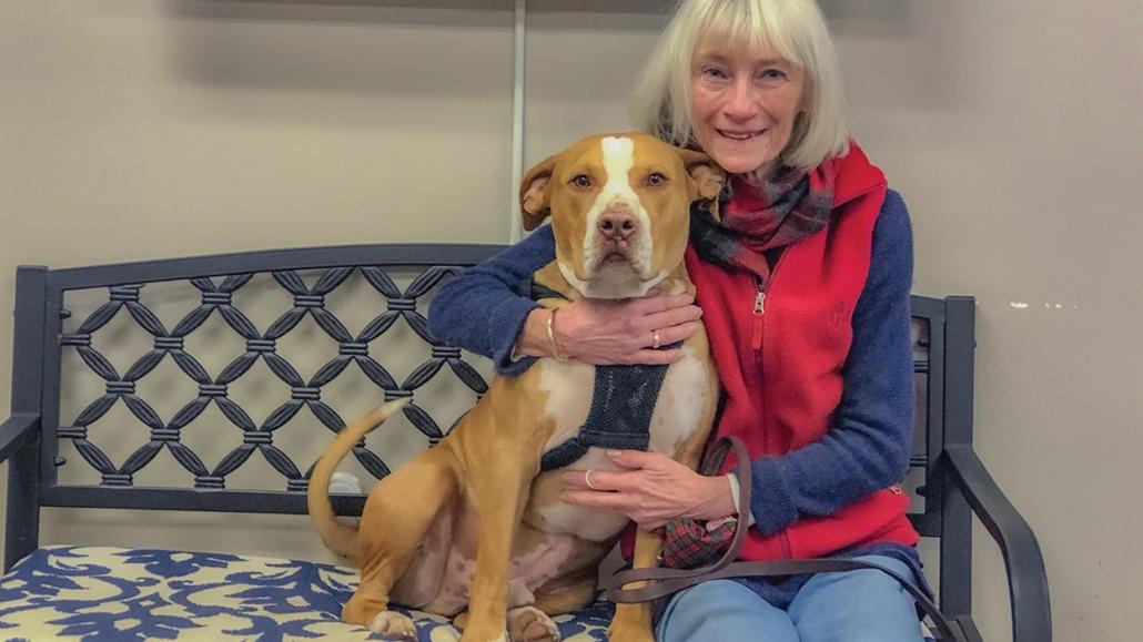 cashiers-highlands-humane-society-doggie