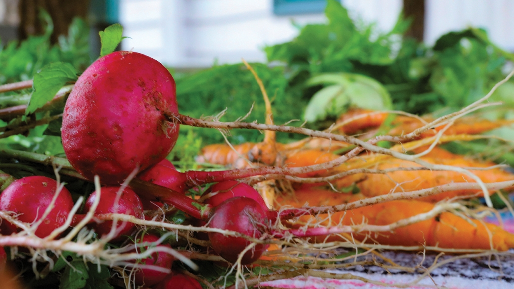 cashiers-nc-green-market-beets