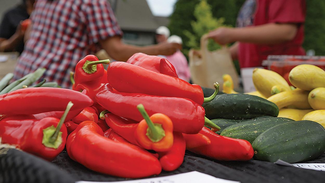 highlands-Marketplace-vegetables