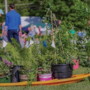 mountain-garden-club-plant-sale-buggy