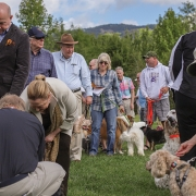 cashiers-nc-blessing-of-the-animals