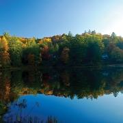 Highlands Biological October-fall-leaves
