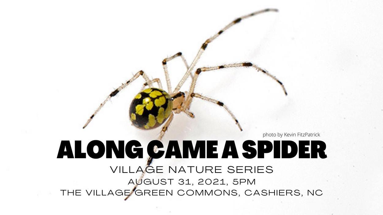 Village Nature series
